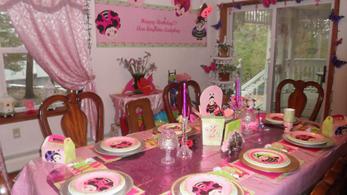 Ladybug Birthday Party For Our Two Year Old Daughter